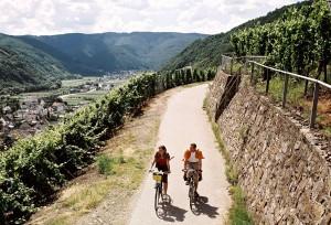 10-15 ADFC RLP Fahrradtour Weinberge
